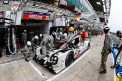 24LM_Facts7