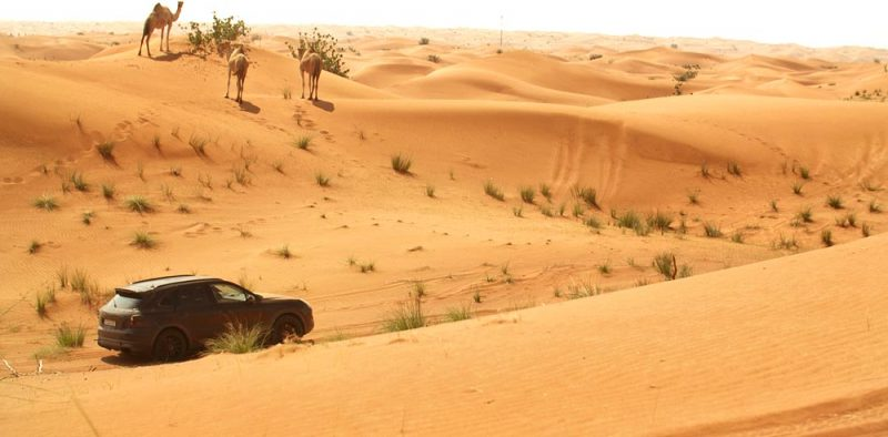 Endurance test with the new Porsche Cayenne in Dubai.
